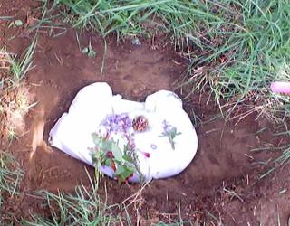 Кремация кошки кота вместо захоронения