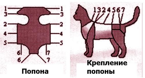 Попона для кошки простая