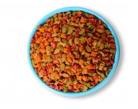 Можно ли кормить котов только сухим кормом