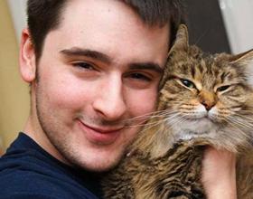 Почему нельзя обнимать котов?