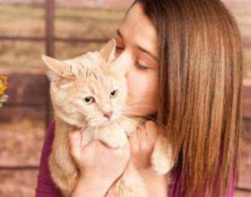 Почему нельзя целовать котов
